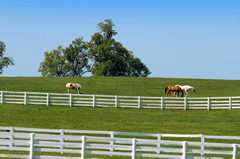 Cuyahoga Falls Basic Farm & Ranch insurance